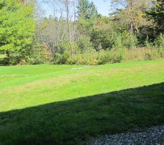 Kent back yard