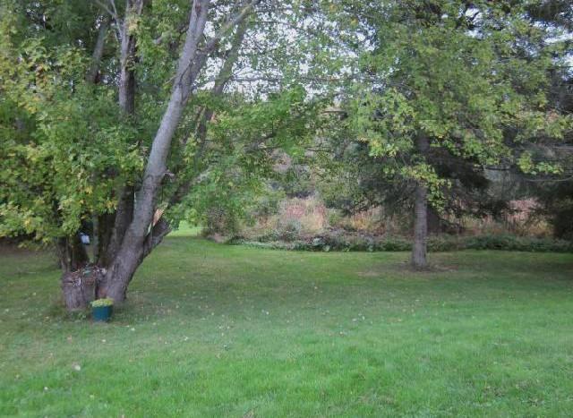 238 Emerson Mill back yard